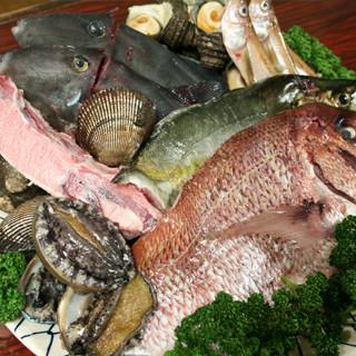 【鮮度抜群】毎日中央市場へ店主が自ら出向き新鮮ななお魚を仕入れております!