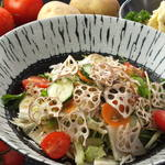 20種類の野菜たっぷりサラダ レギュラー