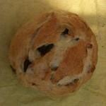 coton bakery -