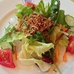 マルデナポリ - ハーブ野菜のグリーンサラダ