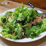 ソンポーン - 料理写真:2013.7 タップワーン(豚レバーのサラダ)