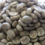 ボン・カフェー - 料理写真:コーヒーの生豆