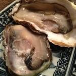 20090534 - 生牡蠣