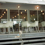 Sghr cafe Kujukuri - テラス席はわんこOK