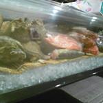 菜々海 - 新鮮魚介が出番待ち