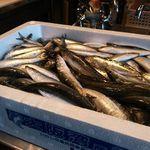 魚ダイニング光 - 大阪湾の朝獲れイワシ入荷!!もちろん刺身でご堪能頂けます♪