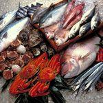 炉端かば - 鮮魚