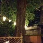 鰻割烹 伊豆栄 梅川亭 - 2013/07 立派な大木がありました、樹齢何年なのかな