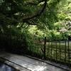 旅館 みどり荘 - 内観写真: