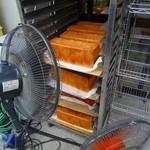 原パン工房 - 食パンが扇風機にあてられてました・・・駐車場で(笑