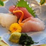 ウィスタリアンライフクラブ - 刺身 メジマグロ ヒラマサ、鯛.JPG