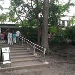 ペパカフェ・フォレスト - お店へと続く階段で御座います。