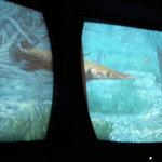 フィッシュオンチップス - 壁面には魚のCGを映す大型スクリーンが