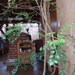 ボージャン - 店内には植物がいっぱい。