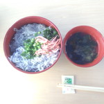 20365393 - 生 ゆで の2色丼 並盛り 桜えびは漬け丼からもらったので、倍量です。