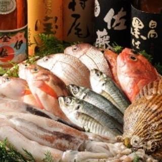 毎朝豊洲で直買い★朝獲れ鮮魚