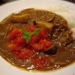 サンマルコ - OptioA30:イタリアントマトとなすびカレー