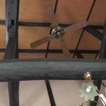 ハーブ&クラフト花木香 - 高くて開放感のある天井