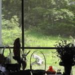 ハーブ&クラフト花木香 - 緑に囲まれた店舗