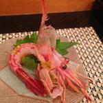 SUSHIYOSHI - 縞海老