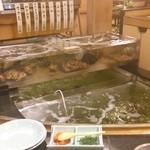 割烹 かじ - 生け簀にはいろんな魚がいっぱい