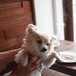 anea cafe - お誕生日の似顔絵ケーキプレートに花火パチパチ