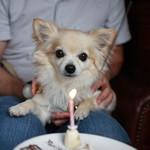 anea cafe - お誕生日の似顔絵ケーキ