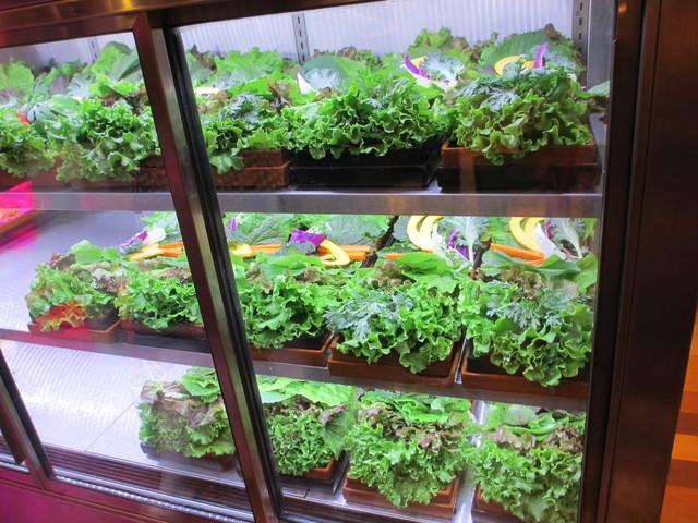 くるむ サンパ店 - 店内には大きなお野菜のショーケース