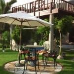 グリーンポスト - 芝生のテラス席と二階のテラス席