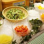 ひな野 - 安心・安全なお野菜はサラダで食べればより野菜のおいしさがわかります。