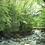 新井旅館 - 当館の隣に流れる清流桂川