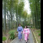 新井旅館 - ミシュラン2つ星に輝いた竹林の小径