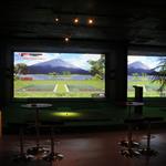 ジャングル ゴリラ - シュミレーションゴルフ。2台。