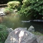 創作川魚料理 料亭 龍泉荘 - お庭の池
