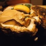 先斗町 魯ビン - とれたての牡蠣《本日のお勧め》