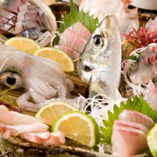 いけす活き造り、鮮魚刺し盛り、とにかく魚が美味しい!
