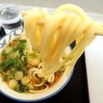 徳光パーキングエリア(上り線)フードコート - 天ぷらうどん(400円)ネギ多め 丸っこい茹で麺