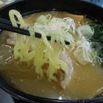 20693067 - (2013/7月)「信州みそのラーメン」の麺