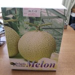 ミリオン洋菓子店 - メロンの箱にはいっています。