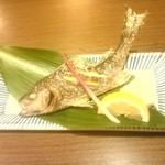 根魚 静 - いさき 塩焼き