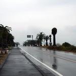 道の駅 フェニックス -