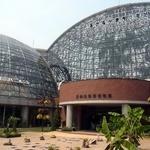 夢の島カフェ - 熱帯植物園