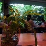 夢の島カフェ -