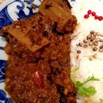 天の勢 地球カレー - 拙速的咖哩飯