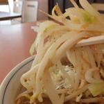 らーめん えぞ梟 - サッポロ寿味噌ラーメン 580円の野菜 【 2013年8月 】