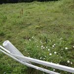神津牧場 - 牧草地の白いフェンス
