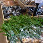 あおぞら館 - 料理写真:新鮮な野菜が信じられないほど安いお値段で並んでいます