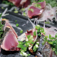 ワオン - 旬の時期は高知県から鰹を直送、、その他三重県・高知県より四季の活魚をご用意、四季折々の味覚をお楽しみください。