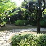 壺中庵 - 蘭の間から中庭を眺められます