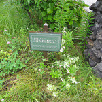 サンクゼール・ワイナリー - ゲート前の聖句